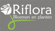 Riflora in Vlijmen